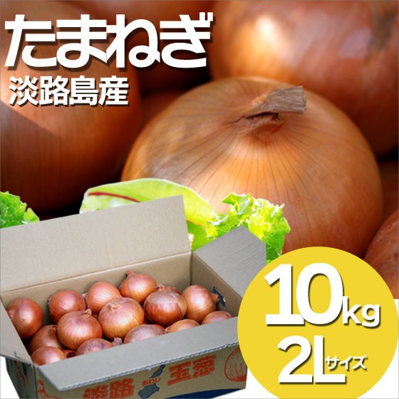 送料無料 人気 淡路島 たまねぎ 2L 10kg 玉ねぎ 玉葱 淡路島産 兵庫県