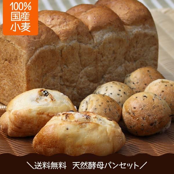 天然酵母パン 送料無料 天然酵母 食パン 2斤 1本 ココナッツレーズンパン2個 胡麻パン5個 ポイント消化 全粒粉食パン 国産小麦 詰め合わ