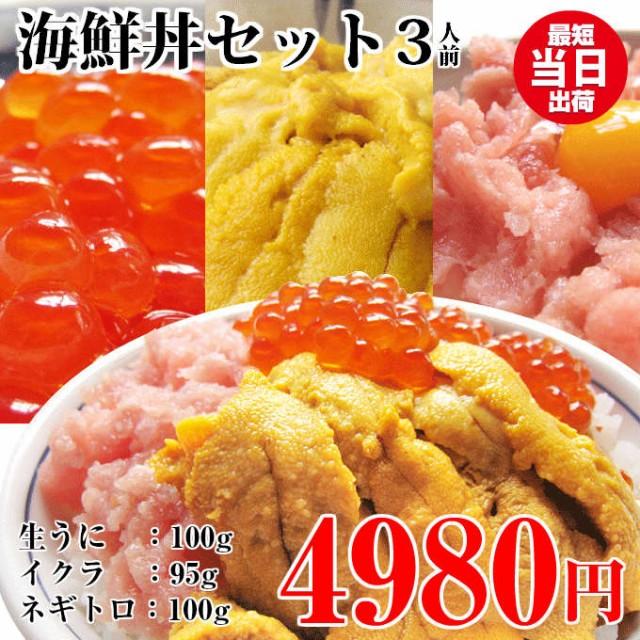 お歳暮 ギフト 海鮮丼セット(ウニ100g ネギトロ100g いくら95g) 本州 送料無料 一人暮らし 海産物 贅沢 高級 誕生日 土産 お取り寄せグル