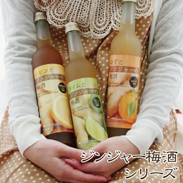 梅酒 レモンとジンジャーの梅酒 箱入り お酒生姜 しょうが 国産 お酒 檸檬 中野BC 長久庵。