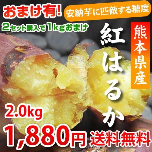 紅はるか 送料無料 2箱購入で1kg増量 生芋 安納芋 に匹敵する糖度 熊本県産 紅蜜芋 石焼き芋 まるでスイーツ