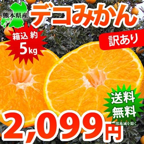 デコポン と同品種 送料無料 デコみかん 訳あり 熊本県産 5kg箱込 内容量4kg + 補償分500g