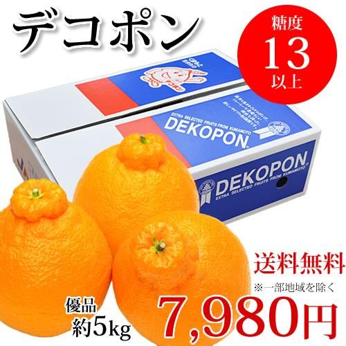 デコポン 約5kg 送料無料 熊本県産 不知火 光センサー選果 dekopon でこぽん