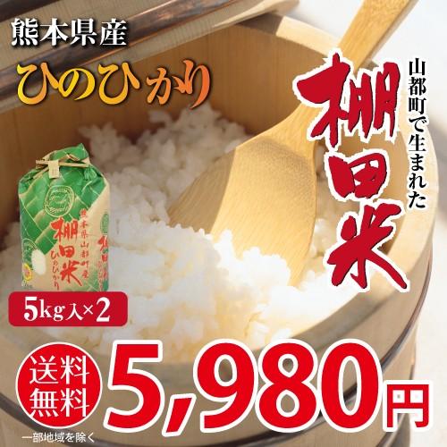 米 新米 送料無料 棚田米 ひのひかり 熊本県産 令和元年産 5kg x 2袋 計10kg