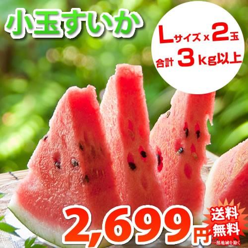 すいか 送料無料 小玉スイカ 熊本県産 ご自宅用 訳あり 2玉 約3kg以上 一部地域は追加送料