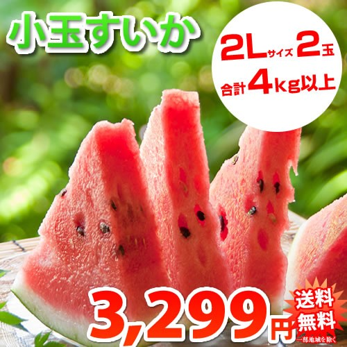 すいか 送料無料 小玉スイカ 熊本県産 ご自宅用 訳あり 2玉 約4kg以上 一部地域は追加送料