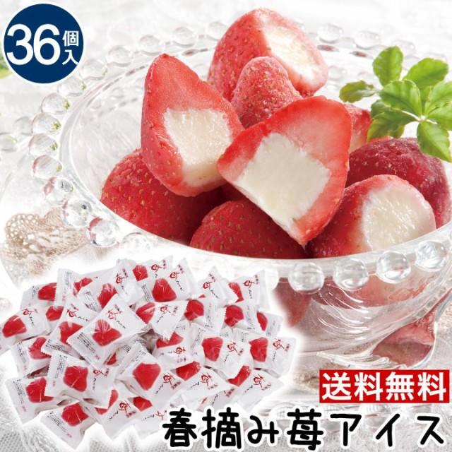 【T】お取り寄せグルメ 送料無料【36個】春摘み苺 アイス 人気 お取り寄せグルメ スイーツ アイスクリーム いちごアイス 内祝い ギフトお