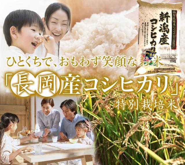 新潟産 こしひかり 白米 5kg 厳しい基準をクリアした特別栽培米【新潟コシヒカリ】【お米 5kg】