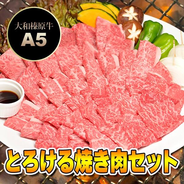 とろける 焼肉セット 松コース 750g (カルビ 250g+極上バラ250g+霜降り肉 250g / 4〜5人前) 送料無料 牛肉 黒毛和牛 A5 焼肉 焼き肉