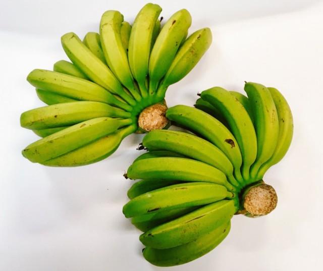 人気の国産バナナ!もちもち美味しい!沖縄産 台湾系 島バナナ(三尺バナナ) 2房
