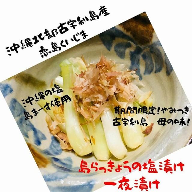 お土産に大好評!沖縄古宇利島産 美味しい!島らっきょうの塩漬け 一夜漬け タップリ 1kg 島まーす(塩)使用