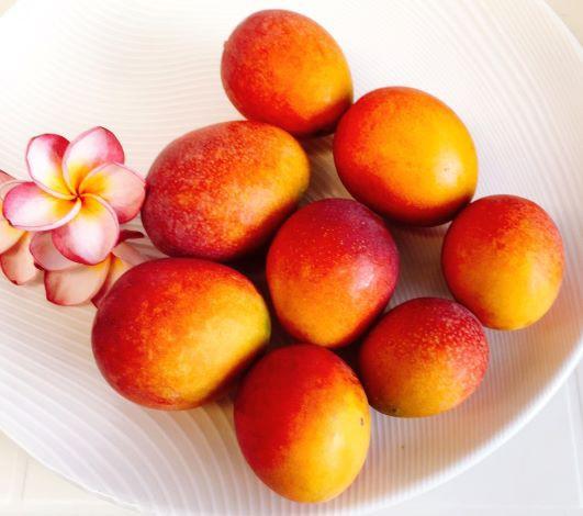 送料無料♪とろける美味しさ!産直でお届けします。沖縄本島産 絶品のミニマンゴー3kg♪ 【特価販売・安心のクール便配送!】