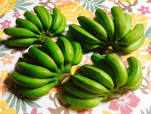 人気の国産バナナ!まったり濃厚!モチモチ美味しい!沖縄産 無農薬!島バナナ 2房