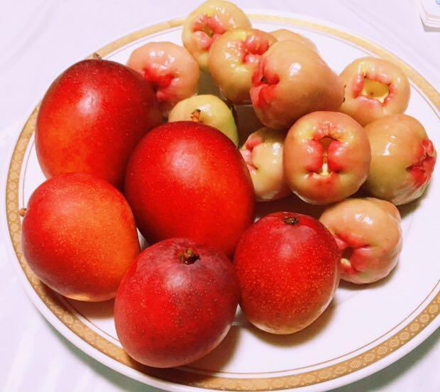 レアな沖縄産フルーツ!レンブ と甘く美味しい!ミニマンゴー のセット!