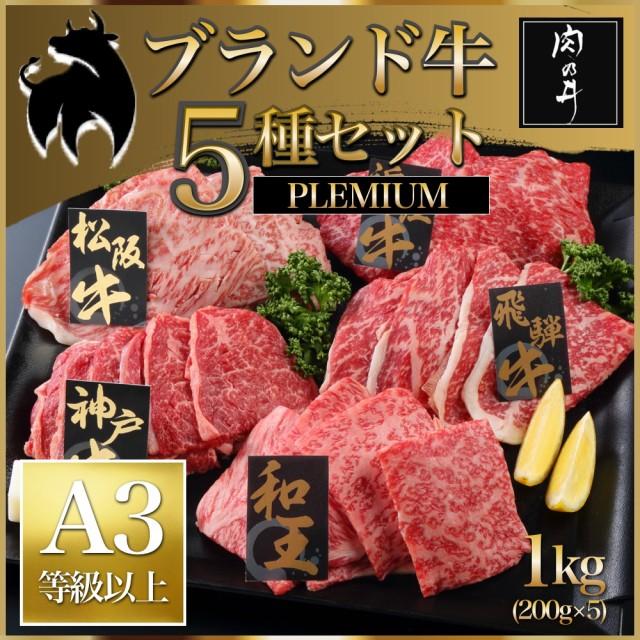 肉 松阪牛 神戸牛 飛騨牛 近江牛 和王 送料無料 1kg 「ブランド牛 5種プレミアセット1kg 」