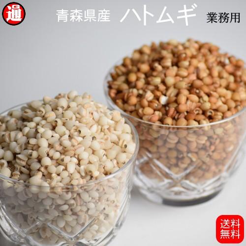 ハトムギ精白 玄ハトムギ 送料無料 5kg 業務用 はとむぎ 青森県産 はと麦 ハトムギ 精白はとむぎ 雑穀米 健康食品 利尿作用 ヨクイニン