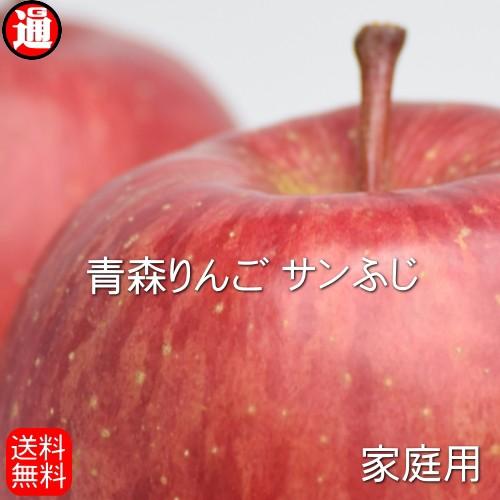 青森りんご 10kg 送料無料 りんご 訳あり サンふじ 家庭用 22玉〜46玉入り 加納りんご農園 リンゴ 青森 サンふじ