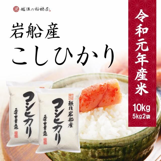 米 コシヒカリ 10kg 岩船産 お米 特A こしひかり 新潟県産 送料無料 令和元年産