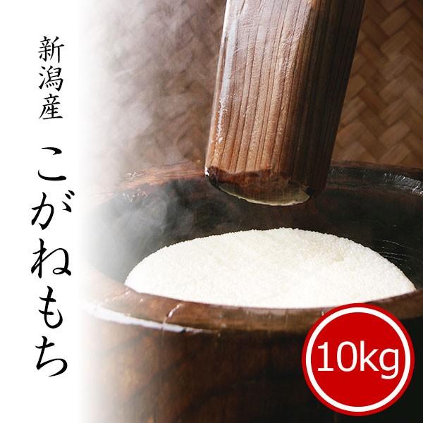 もち米 10kg 新潟県産こがねもち お米 送料無料 令和2年産 5kg x2袋 ※沖縄へは別途送料