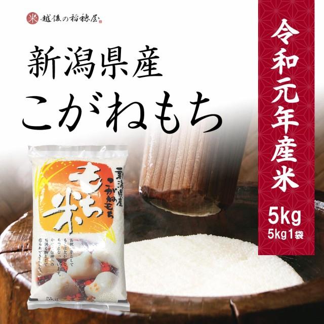 新潟産こがねもち5kg / 令和元年産 送料無料 (一部地域のぞく) もち米