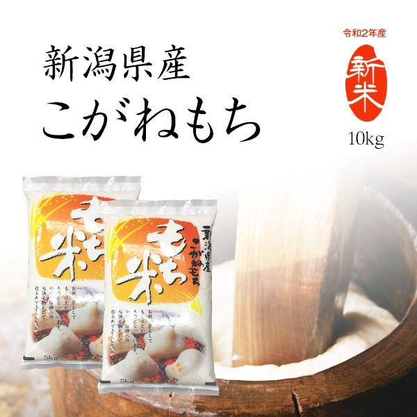 【新米】もち米 10kg 新潟県産こがねもち お米 送料無料 令和2年産 5kg x2袋