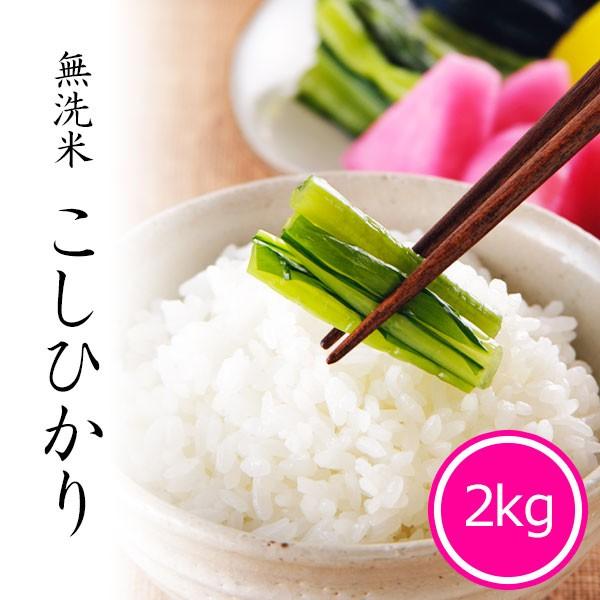 米 2kg 無洗米 新潟コシヒカリ 令和2年産 お米 精米 白米 新潟県産
