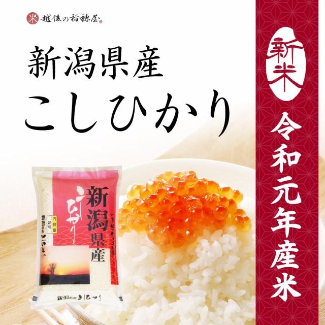 新米 新潟産コシヒカリ2kg / 令和元年産 送料無料 (一部地域のぞく) お米 こしひかり