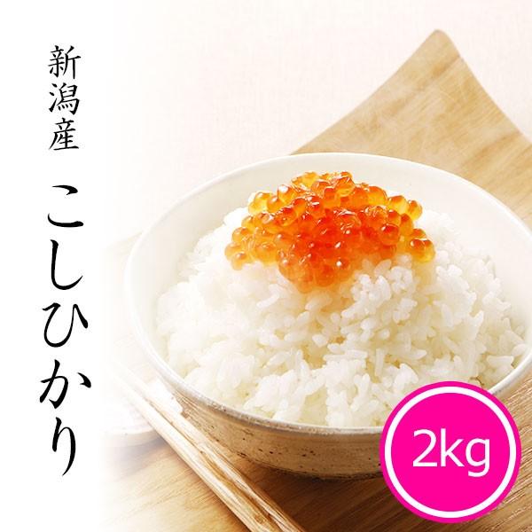 米 2kg 新潟県産コシヒカリ 令和2年産 お米 精米 白米 新潟県産