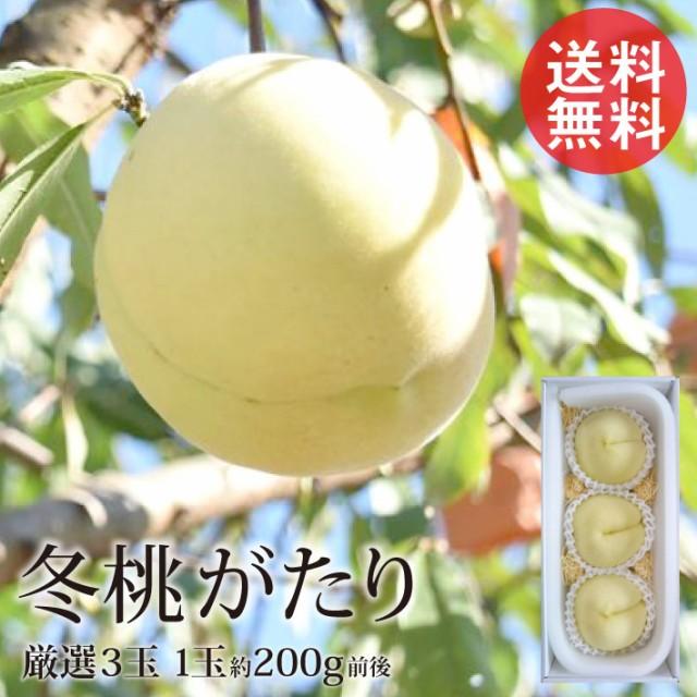 冬桃がたり ふゆももがたり 3玉 1玉約200g前後 厳選 平均糖度15度以上 岡山 お歳暮 白桃 産地直送