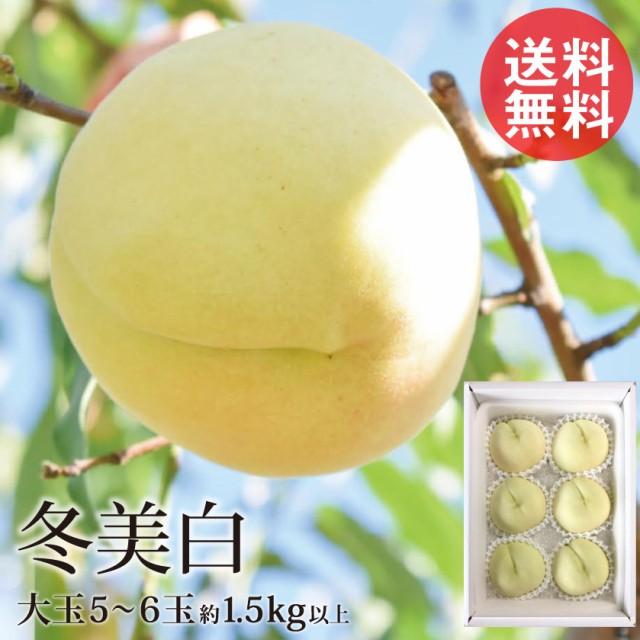 冬に食べられる白桃 冬美白 とうびはく 5〜6玉 1.5kg前後 岡山 冬桃 白桃 産地直送