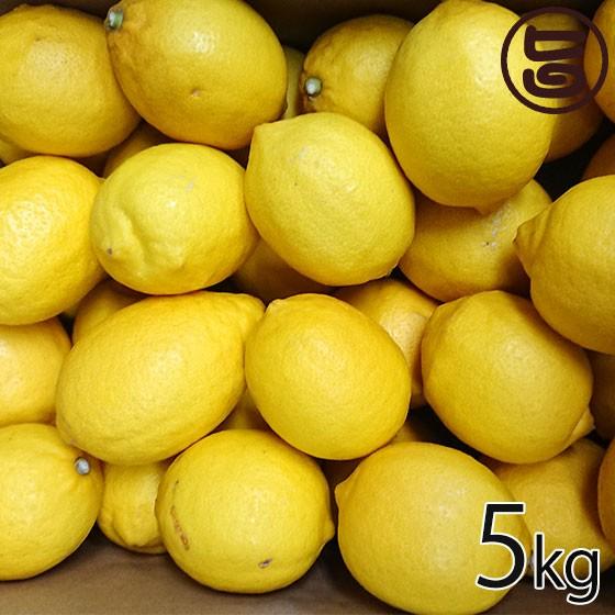 瀬戸内 レモン 約5kg 箱 満杯詰め M〜2L 国産 条件付き送料無料