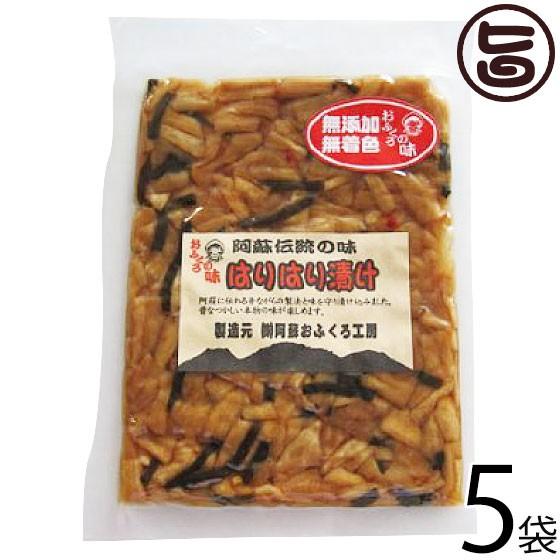 阿蘇おふくろ工房 はりはり漬け 100g×5袋 熊本県 菊池産の冬季収穫大根を使用 阿蘇の昔ながらの製法 伝統の漬け 無添加 無着色 条件付
