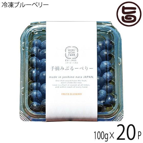 冷凍ブルーベリー100g×20P 無農薬栽培 安心 安全 条件付き送料無料