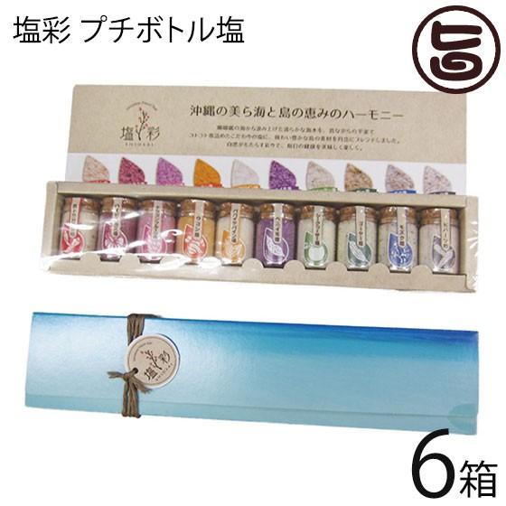 カヨコーポレーション 塩彩 プチボトル塩 5g×10本×6箱 沖縄 土産 沖縄土産 送料無料