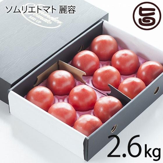 レッドアップ とまと ソムリエトマト 麗容 2.6kg 熊本 ギフト プレゼント 復興支援 条件付き送料無料