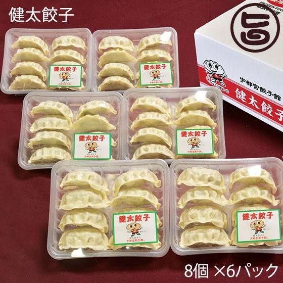 宇都宮餃子館 健太餃子 タレなしで旨い 8個×6パック 栃木県 宇都宮 土産 おかず 送料無料