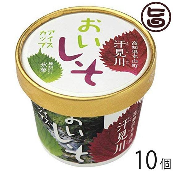 さめうらフーズ おいしそアイスカップ 120ml×10個 高知県 汗見川栽培 赤シソ・大葉の爽やかな 香料・着色料不使用 条件付き送料無料