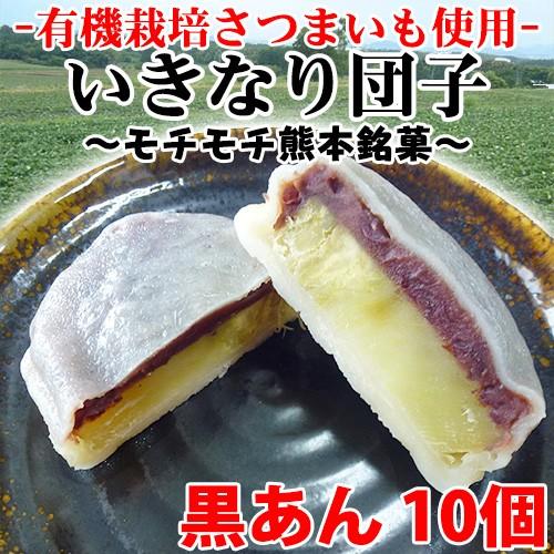 いきなり団子 黒あん10個×1 熊本県 九州 復興支援 人気 和菓子 条件付き送料無料
