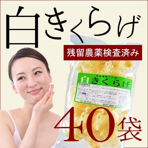 白きくらげ 50g×40P 沖縄 人気 キクラゲ 土産 健康管理 めざましテレビ 送料無料