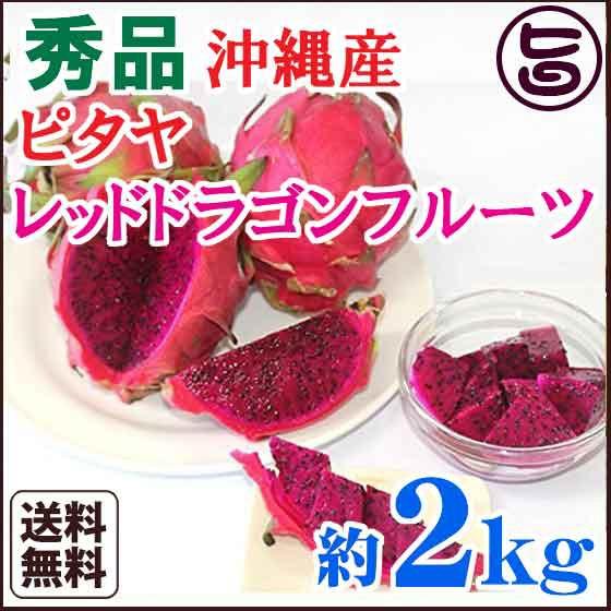 秀品 沖縄産 ピタヤ レッドドラゴンフルーツ 約2kg 沖縄 条件付き送料無料