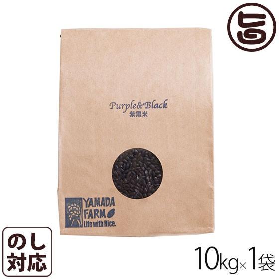 紫黒米 古代米 10kg×1袋 青森県 人気 健康管理 国産米 土産 条件付き送料無料