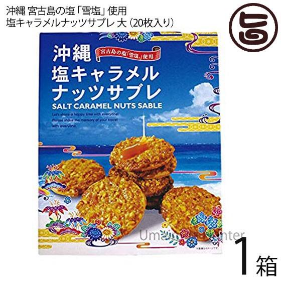 塩キャラメルナッツサブレ大×1箱 沖縄土産 人気 お菓子 焼き菓子 サブレ お土産 送料無料