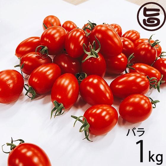 GINZA FARM 高糖度プレミアムトマト 1kg バラ納品 新鮮 高級 条件付き送料無料