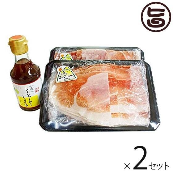 島豚あぐー しゃぶしゃぶ肉 250g×2P タレ付き 2セット ジューシーな脂が特徴 送料無料