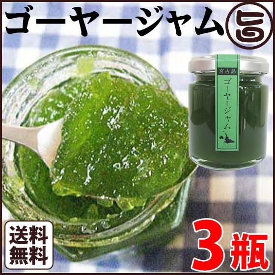 ゴーヤージャム 110g 3瓶 沖縄 フルーツ 南国 野菜 お土産 手土産 人気 送料無料