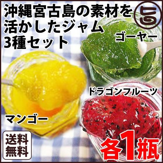 マンゴー ドラゴンフルーツ ゴーヤー ジャム 110g 各1瓶 沖縄 フルーツ 南国 送料無料