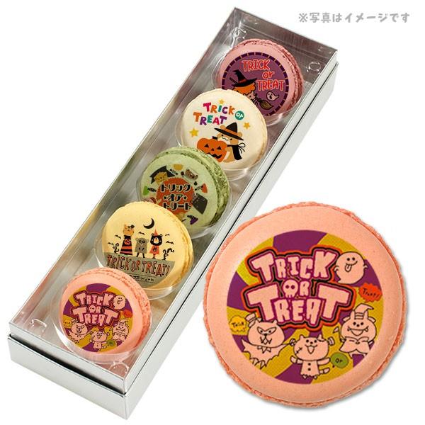 【送料無料】ハロウィン お菓子 メッセージマカロン 動物たちの楽しいハッピーハロウィン 5個セット スイーツ ギフト