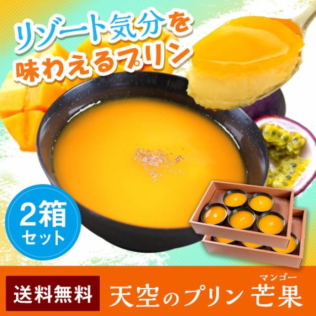 送料無料 敬老の日 ハロウィン 人気 お取り寄せ スイーツ 天空のプリン 芒果 マンゴー 5個入り 2箱セット 誕生日 ギフト プリン 洋菓子