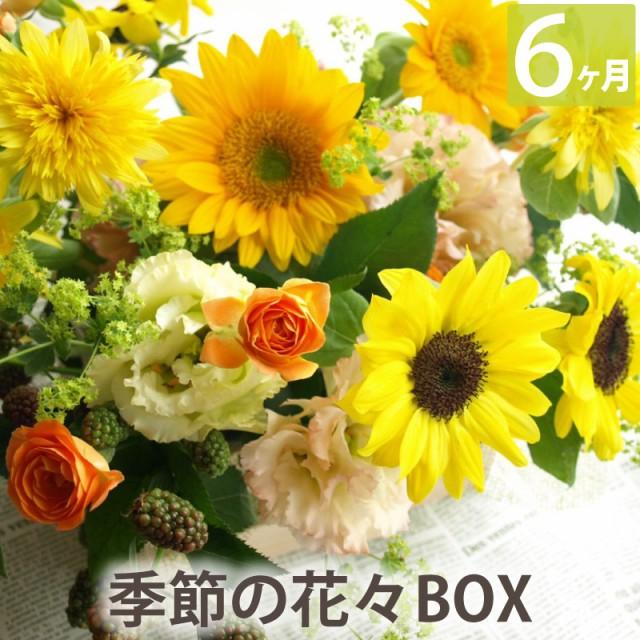 【毎月第2火曜にお届け】生花【花々BOX Cコース6ヶ月】送料無料 ギフト お祝い 敬老 誕生日 頒布会 お花の定期便 毎月届く 花束 花の