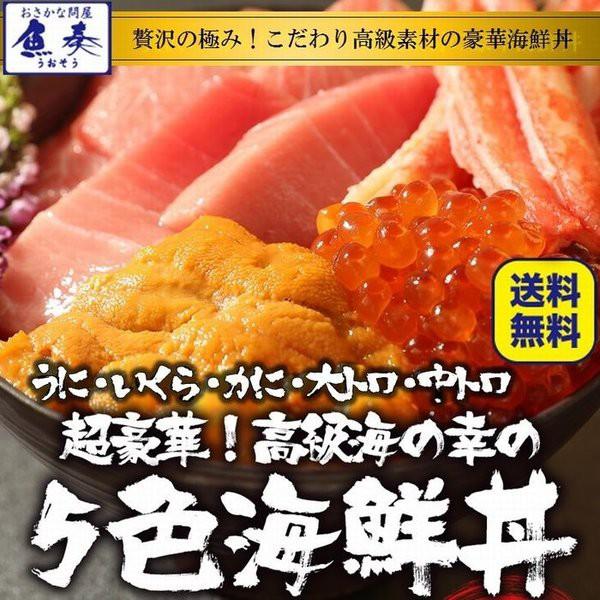 五色海鮮丼 敬老の日 送料無料(本まぐろ大トロ 中トロ 生うに いくら ずわいかに) 4〜7人前 最高級 刺身 手巻寿司 グルメ